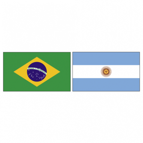 Artigo: Brasil e Argentina, amizade para o futuro